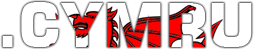 Geo Kultur, globalisme domain names - .CYMRU